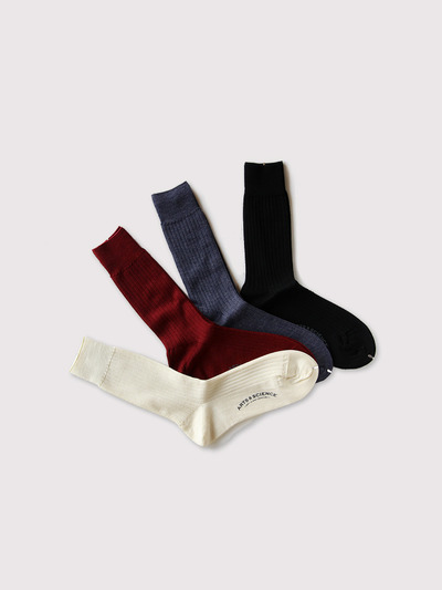 Plain rib socks 2