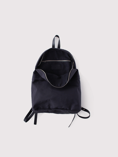 Day pack L~old canvas 2