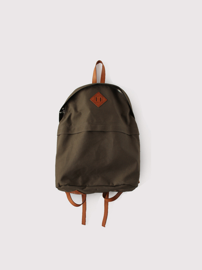 Day pack L~old canvas 1
