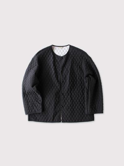 Liner jacket~silk 1