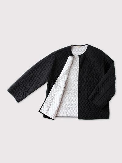 Liner jacket~silk 2