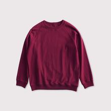 Raglan sleeve long T-shirt 【SOLD】