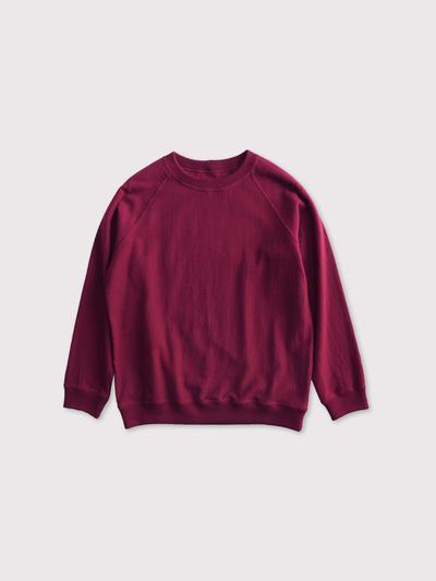 Raglan sleeve long T-shirt 【SOLD】 1