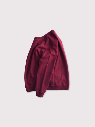 Raglan sleeve long T-shirt 【SOLD】 2