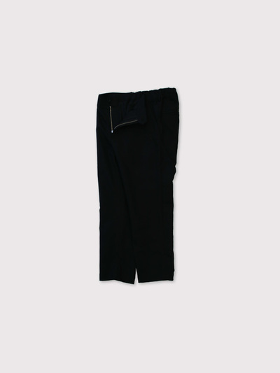 Back gum tapered pants 2